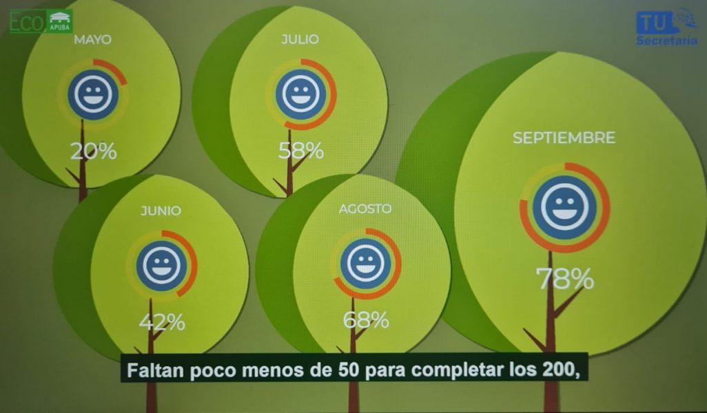 Luz Verde: 150 árboles amapadrinados